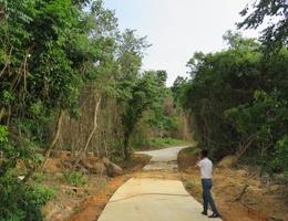 Thanh tra toàn diện một dự án tại Vườn quốc gia Phong Nha - Kẻ Bàng