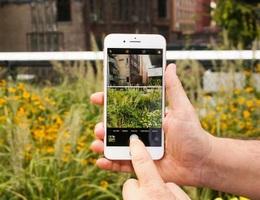 Thiết kế nhàm chán nhưng iPhone SE có thể là chiếc điện thoại tốt nhất năm