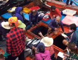 Hà Tĩnh: Dự chi 233 tỷ đồng tới nhóm lao động bị mất việc làm vì Covid-19