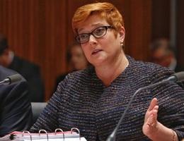 Ngoại trưởng Australia chỉ trích Trung Quốc đâm tàu Việt Nam trên Biển Đông