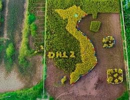 Độc đáo bản đồ Việt Nam ghép từ cây lúa ở Học viện Nông nghiệp