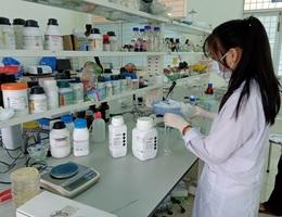 Hai nữ sinh lớp 11 nghiên cứu khả năng kháng đái tháo đường của cây lá gai