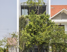 """Vợ chồng trẻ ở Huế làm """"vườn đặt trong nhà"""" khiến mùa hè vẫn mát rượi"""