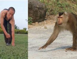 Tập thể dục kiểu đi 4 chân như khỉ suốt 30 năm