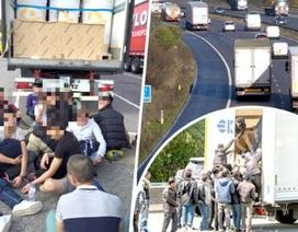 Anh bắt 17 người Việt nhập cư trái phép trốn trong thùng xe tải