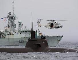 """Nga và NATO đang """"tích cực chuẩn bị cho chiến tranh"""""""