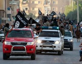Phiến quân IS chuộng xe bán tải Toyota, hãng xe Nhật khó xử