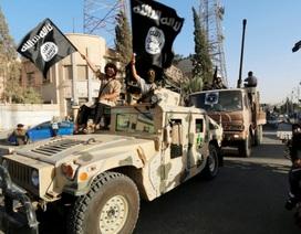 IS mưu đồ thánh chiến toàn cầu nếu phương Tây điều bộ binh