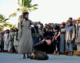 Người Syria trong thảm cảnh trên đầu bom nổ, dưới đất là IS