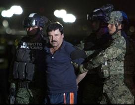 Mexico phê chuẩn dẫn độ trùm ma túy El Chapo sang Mỹ