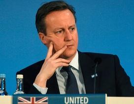 Cử tri chọn rời EU, Thủ tướng Anh có nguy cơ phải từ chức