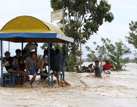 Philippines hoang tàn sau siêu bão Koppu, 9 người thiệt mạng
