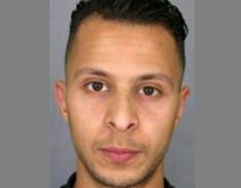 Pháp phát hiện điện thoại di động của nghi can khủng bố Paris