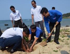 Thanh niên Lào trồng cây bàng vuông trên quê hương Hải đội Hoàng Sa