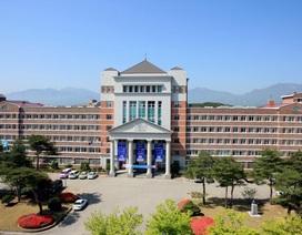 Học bổng Kyungdong Hàn Quốc lên tới 100%