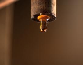Nguyên liệu bất ngờ cho nước mắm chuẩn ngon