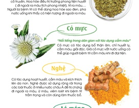 Bí quyết giảm cơn đau trĩ từ thảo dược