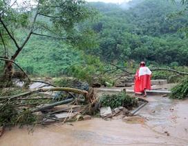 8 thợ rừng mất tích trong lũ trở về