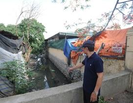 Hà Nội: Người dân Tứ Liên đã bớt nỗi lo về muỗi