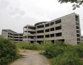 Trường học trăm tỷ bỏ hoang, chờ... rao bán