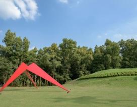 Những tác phẩm điêu khắc ấn tượng trong Tuần lễ nghệ thuật 'Art in the forest'