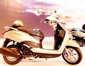 Triệu hồi hơn 31.600 chiếc Yamaha Acruzo tại Việt Nam