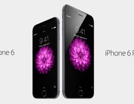 Doanh số bán iPhone 6 gấp 3 lần so với iPhone 6 Plus