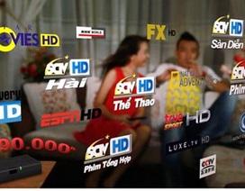 """Thị trường truyền hình trả tiền: Cá bé đua nhau """"tố"""" cá lớn"""