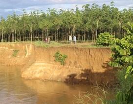 Phát hiện gần 50 vụ khai thác cát trái phép trên sông Đồng Nai