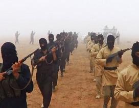 """IS bị """"tố"""" buôn bán nội tạng người"""