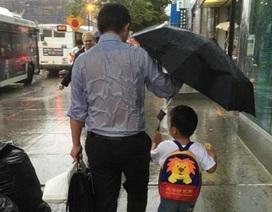 """Dân mạng """"truy tìm"""" người cha chịu ướt che ô cho con"""