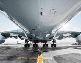 Đuổi việc nữ tiếp viên hàng không bán dâm trên máy bay