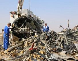 """Máy bay Nga """"bị gài bom trong khoang hành lý ngay trước khi cất cánh"""""""
