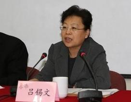 """""""Hổ lớn"""" đầu tiên tại Bắc Kinh bị """"sờ gáy"""""""