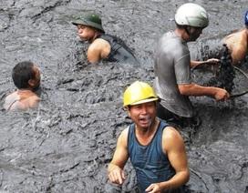 Ngành than thiệt hại 500 tỷ đồng do mưa lũ