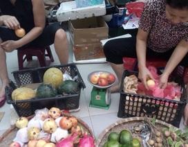 """Táo Trung Quốc vào Việt Nam bị hô thành """"táo mèo Hà Giang"""""""
