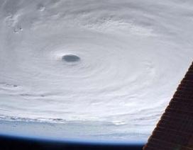 """Mỹ cảnh báo siêu bão mạnh nhất 2015 gây """"sóng tử thần"""""""