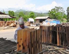 Lãi ròng nửa tỷ đồng/năm từ nghề bóc ván gỗ
