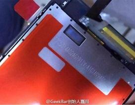Lộ loạt ảnh iPhone 6s trên dây chuyền lắp ráp