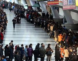 Phân nửa cử nhân xứ Hàn vẫn sống phụ thuộc vào bố mẹ