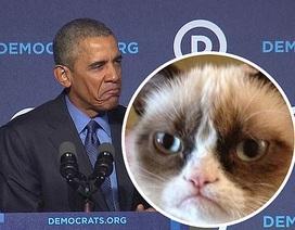 Tổng thống Obama giả mặt mèo cau có chế giễu các ứng viên Cộng hòa