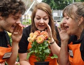 Thuê nhân viên thì thầm với hoa