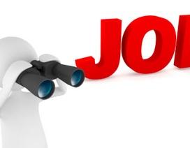 VCCorp tuyển nhiều vị trí quản lý kinh doanh, lập trình viên