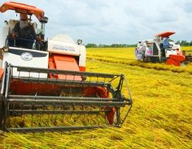 Những nông dân trẻ sáng tạo với công nghệ mới