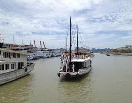 120 doanh nghiệp đã đưa tàu khách vào cảng quốc tế Tuần Châu