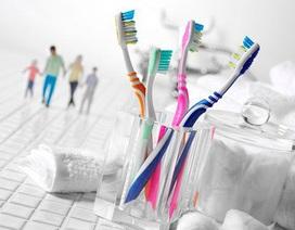 Hủy hoại răng miệng do dùng bàn chải đánh răng sai cách