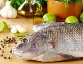 Nên cho bé ăn cá đồng hay cá biển?