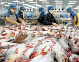 Mỹ tiếp tục áp thuế chống bán phá giá với cá tra Việt Nam