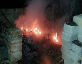 Hoảng loạn bỏ chạy vì nhà liên tục phát hỏa