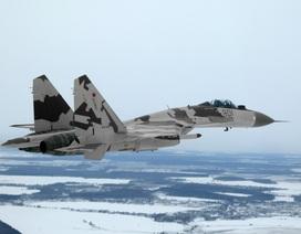 Trung Quốc phải mua Su-35 với giá đắt gấp đôi